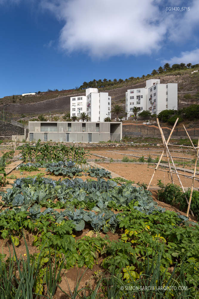 Fotografia de Arquitectura Edificio-El-Lasso-Las-Palmas-de-Gran-Canaria-Romera-Riuz-arquitectos-SG1430_5715