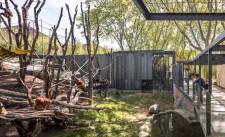 Fotografia de Arquitectura Espacio-orangutanes-zoo-barcelona-forgas-11-SG1629_2147