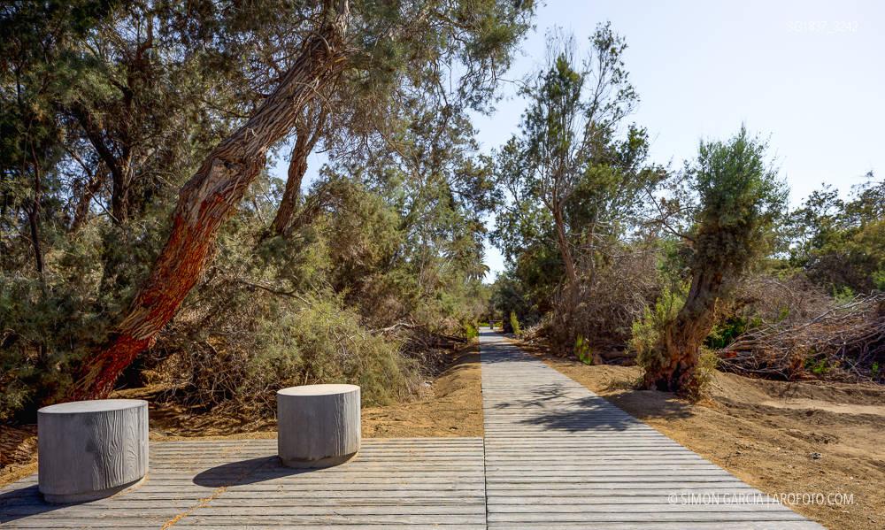 Fotografia de Arquitectura Parque-Tony-Gallardo-Romera-Ruiz-04-SG1837_3242