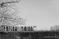 Fotografia de Arquitectura Sede-Mondadori-Niemeyer-02-SG1612_9421-bn
